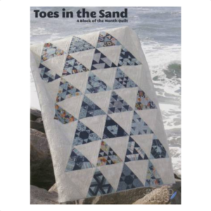 Julie Herman Toes In the Sand Block of the month book bog patchwork